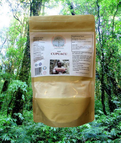 Nature rain forest doi inthanon national park, chiangmai , Thail